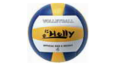vally ball