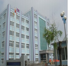 Dandong Top Electronics Instrument (Group) Co., Ltd.