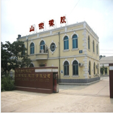 Dalian Lushun Shanrong Rubber Co., Ltd.